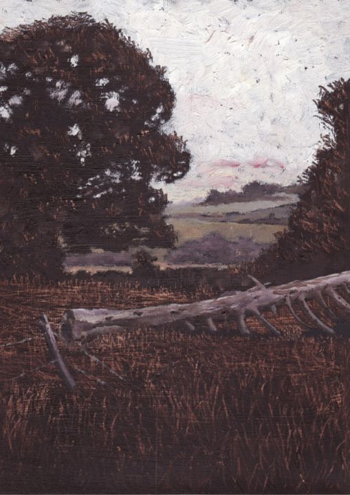 Micheal O Muirthile - Donal's Field