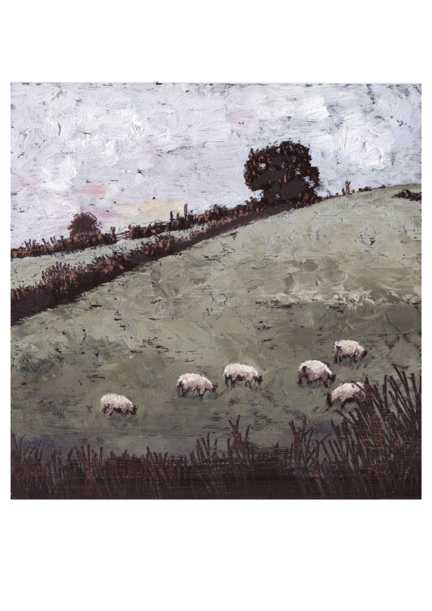 Micheal O Muirthile - The Sheep in Connie's Field